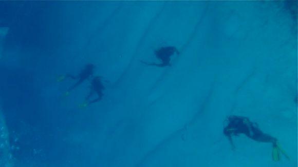 Snorkel Cozumel