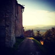 Montone