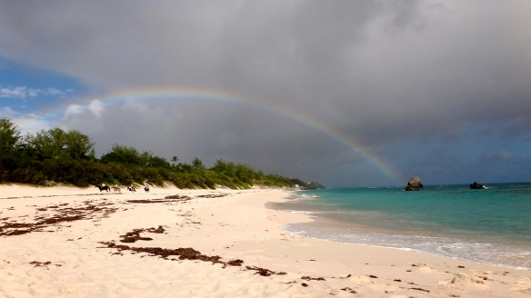 Rainbow Warwick Long Bay