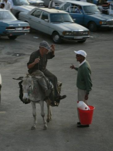 Moulay Idriss Zerhoun (مولاي إدريس)