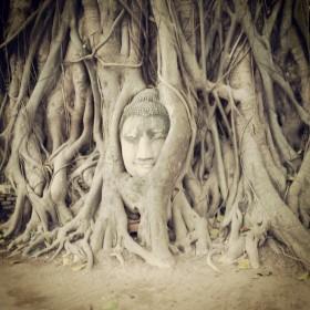 Wat Phra Mahathat - Ayutthaya