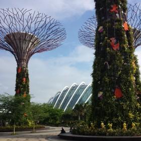 Gardens by the Bay - Singapura